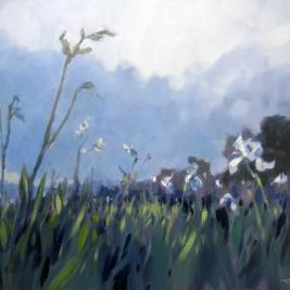 #135, 2012, oil on canvas, 80x100cm