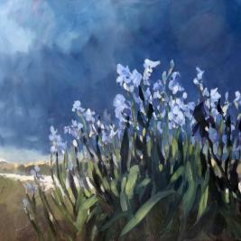 #146, 2012, oil on canvas, 100x120 cm